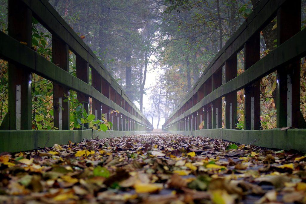 bridge-2936500_1920