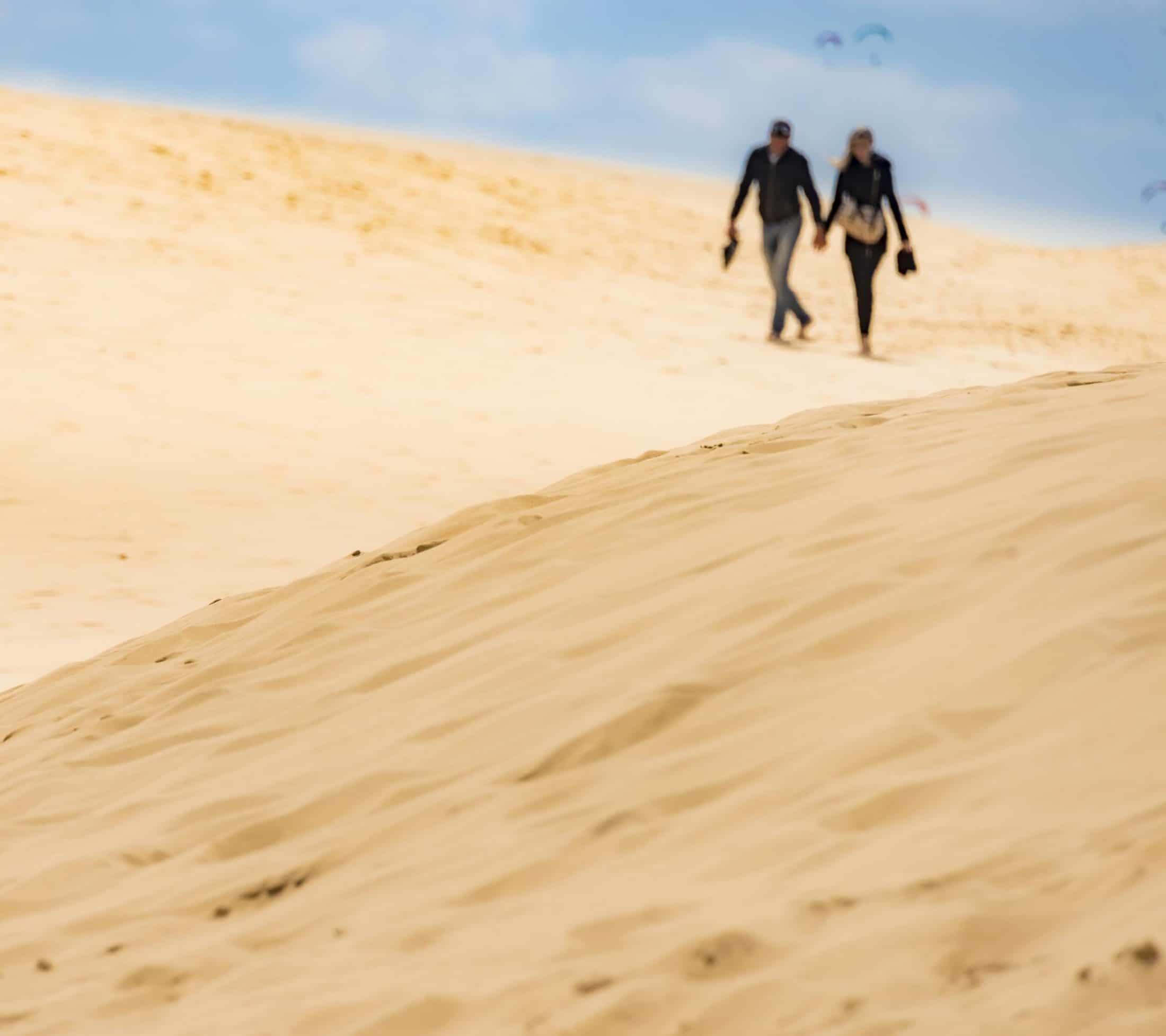 D8e093944_v2-couple-sur-la-dune-1x1-2200px