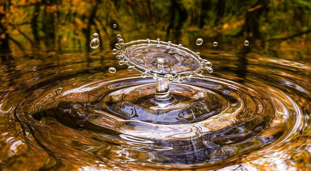 Goutte-eau-Vittoz